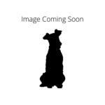 PetCenter Old Bridge Puppies For Sale Komondor